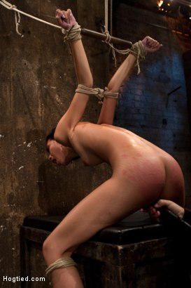 gangbang termine bdsm equipment