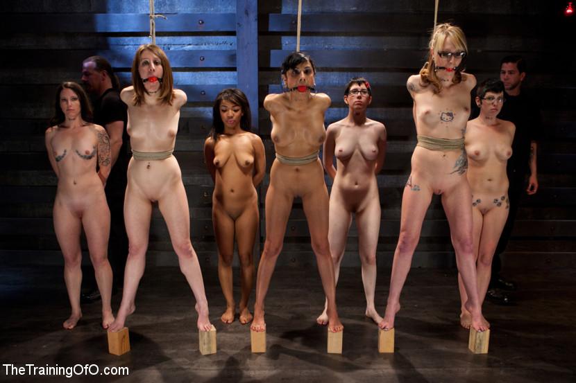привязаны перед парнями видео телки голые