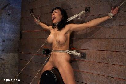 Sex toy insertion