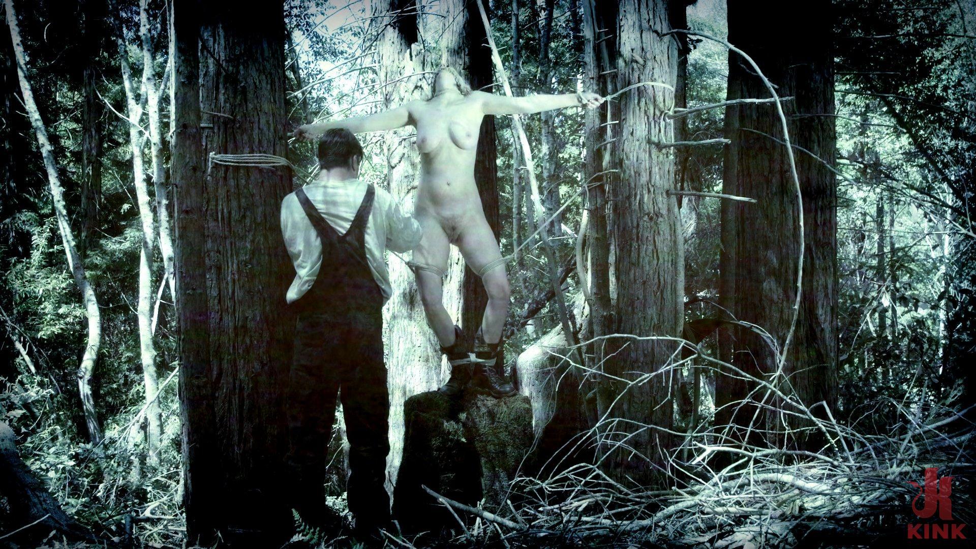 В эротика фильми жестокий лису