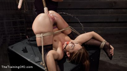 image Rough hard pussy double penetration analmal