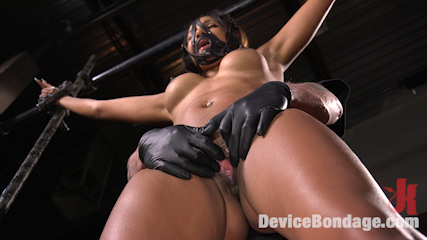 Fresh Meat - Sadie Santana