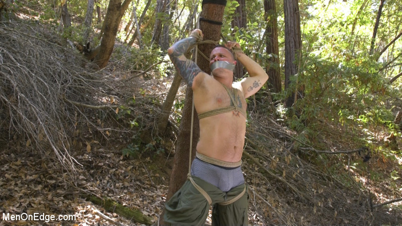 Hard Woods: Max Cameron Suspended and Tormented in California Redwoods