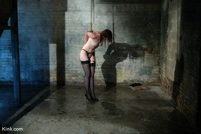 Virtual Sex With Jenna Jameson
