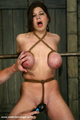 tied in a knot Boobs