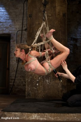 boar suspended orgasm