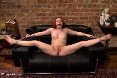Jelena croatian pornstar