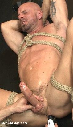 reed gay porn Beau