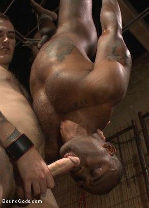 Black gay bondage porn