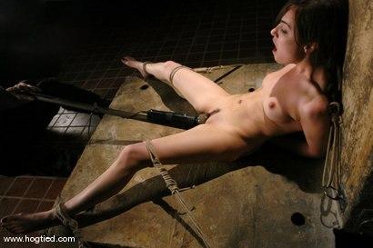Suzy favor hamilton naked