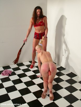 Sharon Wild In Bondage Pic