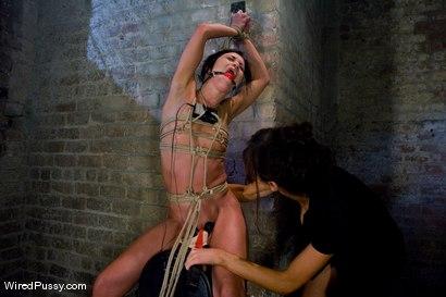Alyssa reece bondage