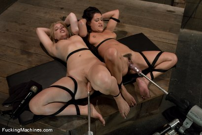 Quality porn Stories of foot femdom domination